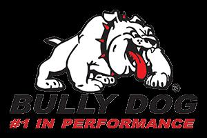 bullydog300